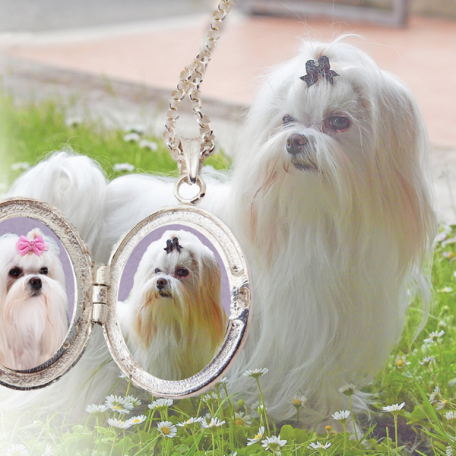 locket maltese copy 2