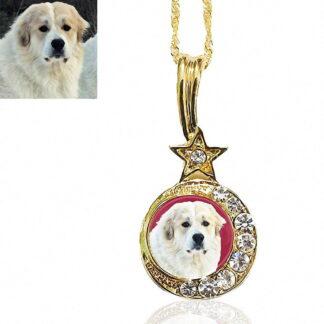 Gold Moon & Star Photo Keepsake Necklace