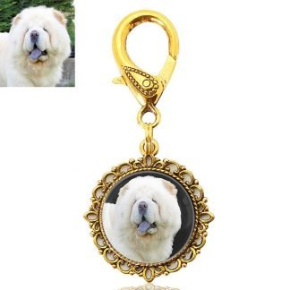 Gold Photo Keepsake Key Ring or Bag Charm