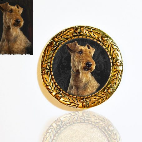 Gold Plated Photo Brooch